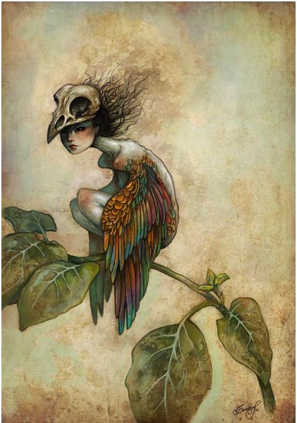 Soul of a Bird